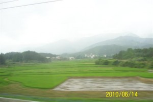 Chinese Country Side
