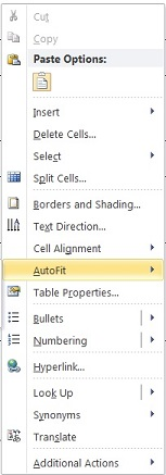 002 Right Click and Select AutoFit - AutoFit to Window